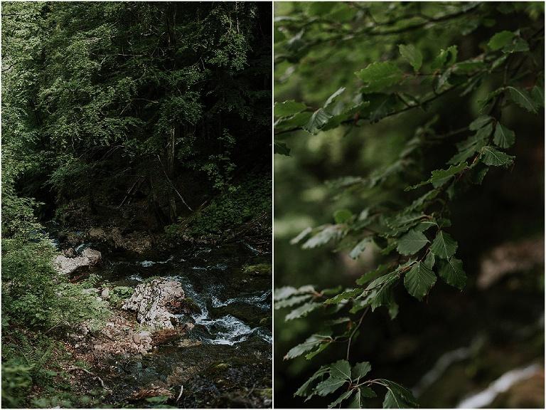 séance photo couple en chartreuse